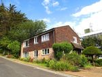 Thumbnail to rent in Leahurst Court Road, Preston, Brighton