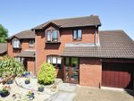 Thumbnail to rent in Tamarisk Close, Exeter