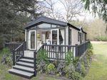 Thumbnail to rent in Lansdowne Park, Wheal Rose, Scorrier