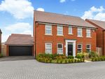 Thumbnail for sale in Dewberry Grove, Clanfield, Waterlooville, Hampshire
