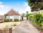 Thumbnail for sale in Donnington Road, Brighton, East Sussex, .