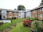 Thumbnail to rent in Lifestyle House, Melbourne Avenue, Broomhill
