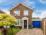 Thumbnail to rent in Rushfords, Lingfield