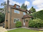 Thumbnail for sale in Hales Field, Haslemere