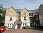 Thumbnail to rent in Wallace Road, Colchester