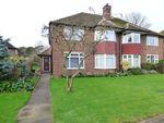 Thumbnail to rent in Beaulieu Close, Twickenham