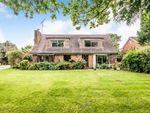 Thumbnail for sale in Ivy Lane, Ashington, Pulborough, West Sussex