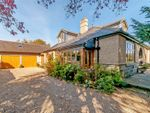 Thumbnail for sale in Clive Road, Spofforth, Harrogate, North Yorkshire