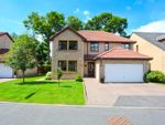 Thumbnail for sale in Jennie Lee Lane, Glenrothes