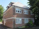 Thumbnail to rent in Bluebridge Road, Brookmans Park, Hatfield