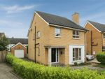 Thumbnail to rent in Hanover Chase, Bangor, County Down