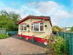 Thumbnail for sale in The Firs, Mobile Home Park, Cannock