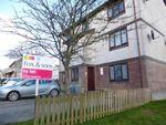 Thumbnail to rent in Porthmellon Gardens, Callington