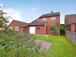 Thumbnail to rent in Dukes Drive, Halesworth