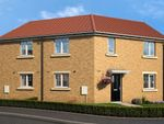Thumbnail to rent in Meadowsweet Lane, Darlington