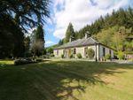 Thumbnail for sale in Shore Road, Kilmun, Dunoon, Argyll & Bute