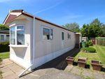 Thumbnail to rent in Hamble Park, Fleet End Road, Warsash, Southampton