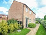 Thumbnail for sale in Terry Road, Stoke Village, Coventry