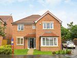 Thumbnail to rent in Rushyford Drive, Chilton, Ferryhill