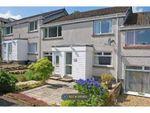 Thumbnail to rent in Poolewe Drive, Redding, Falkirk