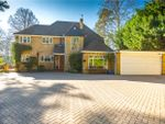 Thumbnail to rent in Dukes Covert, Bagshot, Surrey
