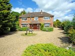 Thumbnail for sale in Herts, Little Offley, Near Hitchin Equestrian Property