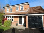 Thumbnail to rent in Healaugh Way, Chesterfield