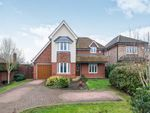 Thumbnail for sale in Guildford Road, Normandy, Guildford