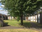Thumbnail for sale in Mascott Close, Neasden, London
