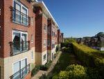 Thumbnail to rent in Bishopthorpe Road, York