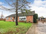 Thumbnail for sale in Chapel Close, Pulham Market, Diss