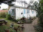 Thumbnail for sale in Tremarle Home Park, North Roskear, Camborne