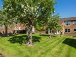Thumbnail to rent in Sadlers Court, Abingdon