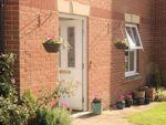 Thumbnail to rent in Teasel Drive, Desborough, Kettering