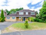 Thumbnail to rent in Zinnia Drive, Bisley
