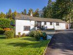 Thumbnail for sale in Tall Pines, 6 Keldwyth Park, Troutbeck Bridge