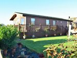 Thumbnail to rent in 16 Cressfield Park, Ecclefechan, Dumfries & Galloway