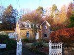 Thumbnail to rent in Rosnevyth Shore Road, Rahane