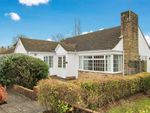 Thumbnail for sale in Rothley Close, Tenterden, Kent