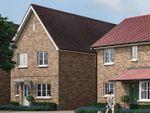 "Thumbnail to rent in ""The Elsenham"" at Park Drive, Maldon, Essex"