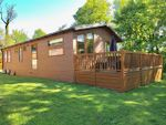 Thumbnail for sale in Holiday Park - Anglesey, Plas Coch Holiday Homes, Llanedwen