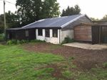Thumbnail to rent in Stambourne Road, Great Yeldham, Halstead