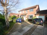 Thumbnail to rent in Hovingham Drive, Scarborough