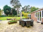 Thumbnail for sale in Farleton Close, Weybridge, Surrey