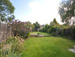 Thumbnail to rent in Cotswold Road, Sutton