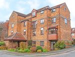 Thumbnail for sale in Albeny Gate, St. Albans, Hertfordshire