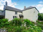 Thumbnail for sale in Harbertonford, Totnes, Devon