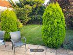 Thumbnail to rent in Green Lane, Addlestone