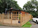 Thumbnail to rent in Edgeley Country Park, Farley Green, Albury, Guildford