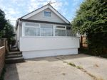 Thumbnail to rent in Buick Avenue, Jaywick, Clacton-On-Sea